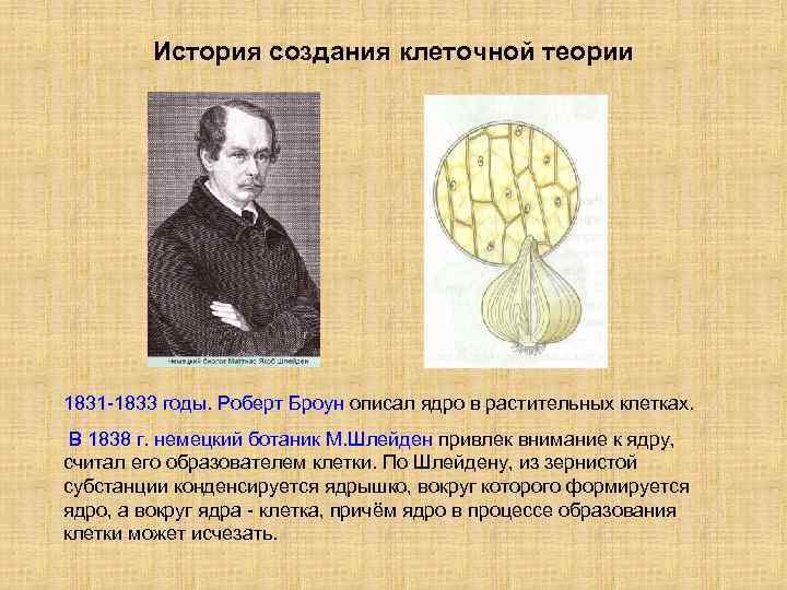 История создания клеточной теории 1831 -1833 годы. Роберт Броун описал ядро в растительных клетках.