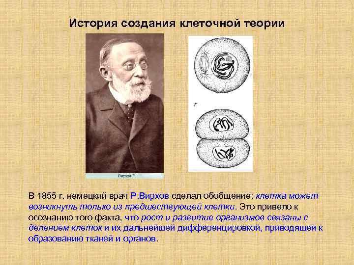 История создания клеточной теории В 1855 г. немецкий врач Р. Вирхов сделал обобщение: клетка