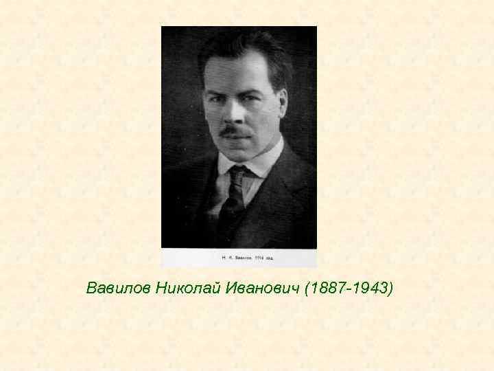Вавилов Николай Иванович (1887 -1943)