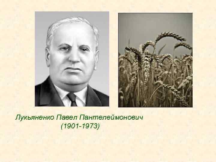 Лукьяненко Павел Пантелеймонович (1901 -1973)