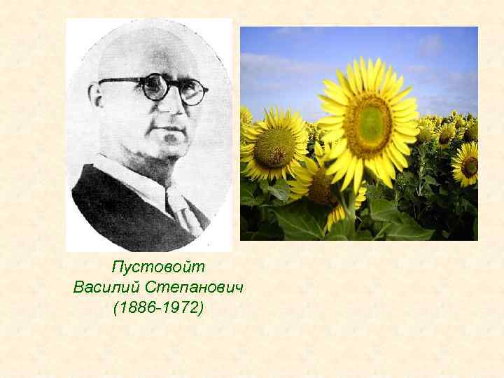 Пустовойт Василий Степанович (1886 -1972)