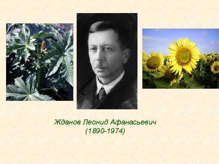 Жданов Леонид Афанасьевич (1890 -1974)