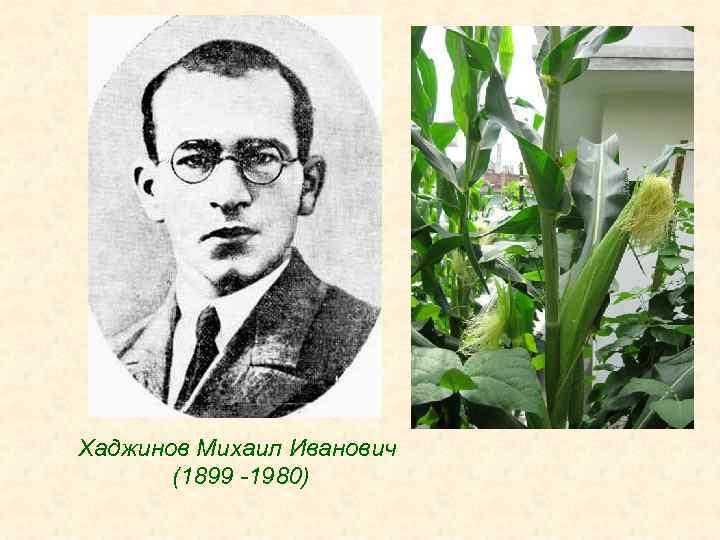 Хаджинов Михаил Иванович (1899 -1980)