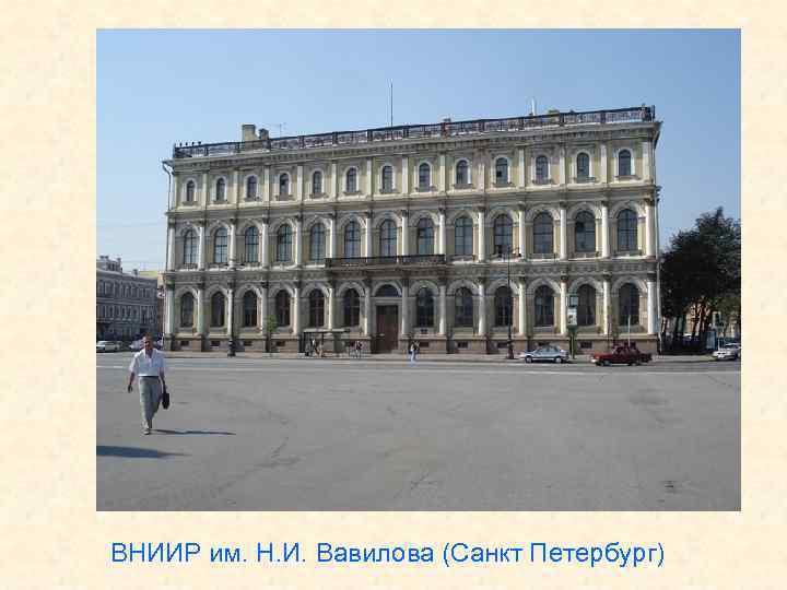 ВНИИР им. Н. И. Вавилова (Санкт Петербург)
