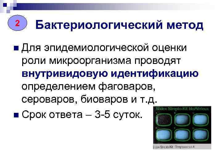 22 Бактериологический метод n Для эпидемиологической оценки роли микроорганизма проводят внутривидовую идентификацию определением фаговаров,