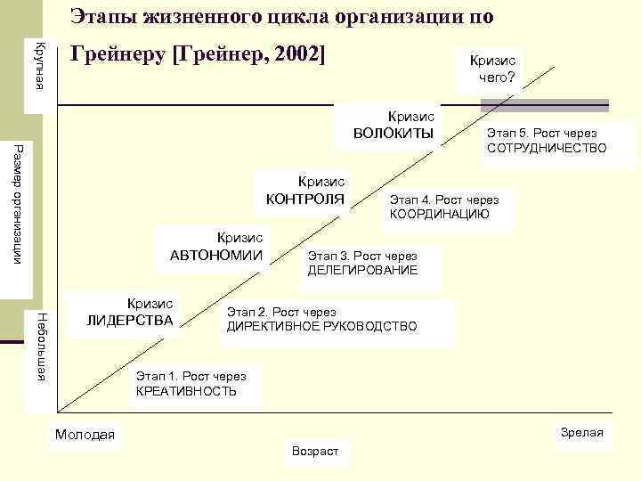 Этапы жизненного цикла организации по