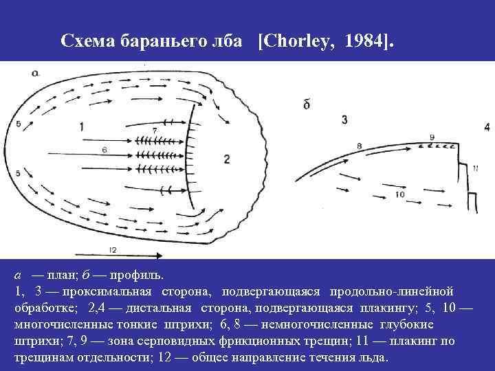 Схема бараньего лба [Chorley, 1984]. а — план; б — профиль. 1, 3