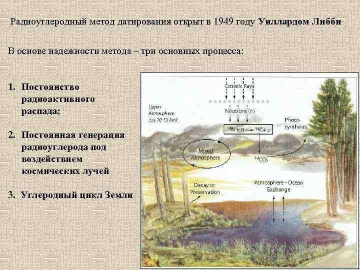 Радиоуглеродный метод датирования открыт в 1949 году Уиллардом Либби В основе надежности метода –