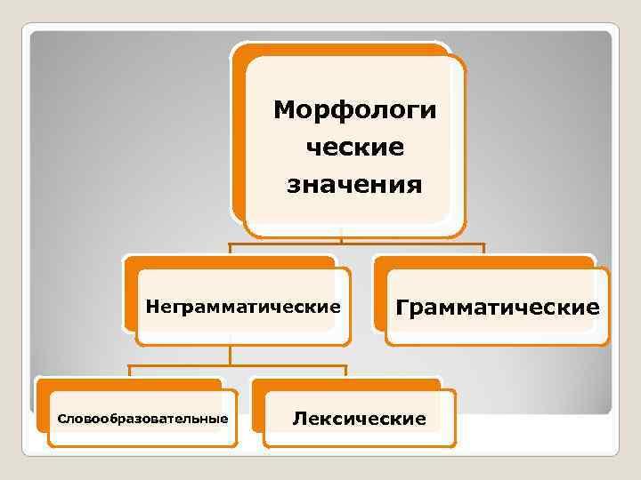 Морфологи     ческие    значения