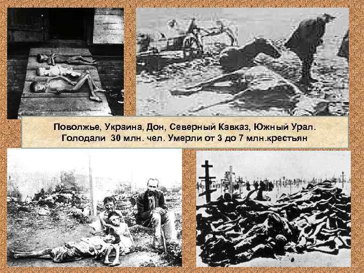 Поволжье, Украина, Дон, Северный Кавказ, Южный Урал.  Голодали 30 млн. чел. Умерли от