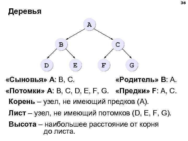 36 Деревья «Сыновья» А: B, C.   «Родитель»