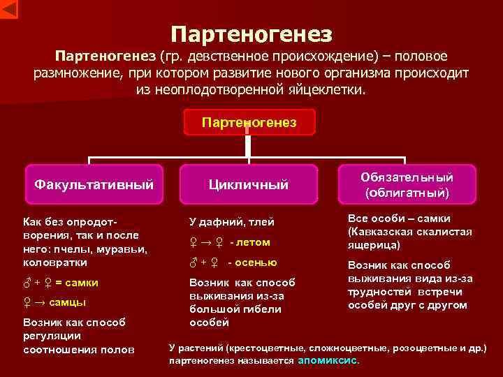 Партеногенез (гр. девственное происхождение) – половое размножение, при котором развитие