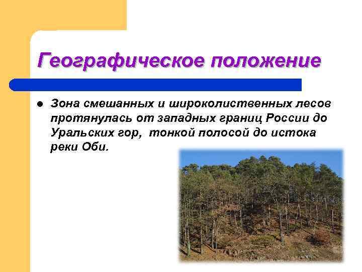 Географическое положение l  Зона смешанных и широколиственных лесов протянулась от западных границ России