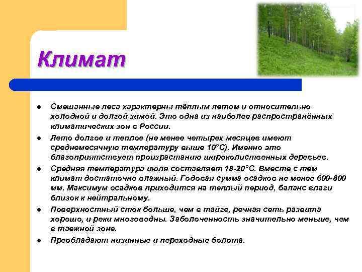 Климат l  Смешанные леса характерны тёплым летом и относительно холодной и долгой зимой.