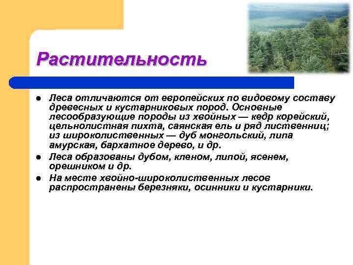 Растительность l  Леса отличаются от европейских по видовому составу древесных и кустарниковых пород.