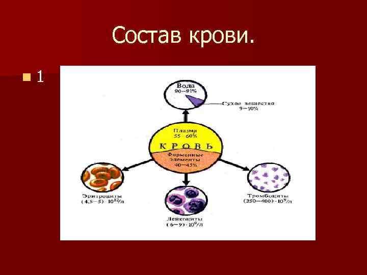 Состав крови. n 1