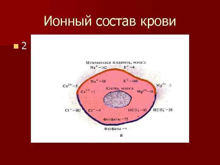 Ионный состав крови n 2
