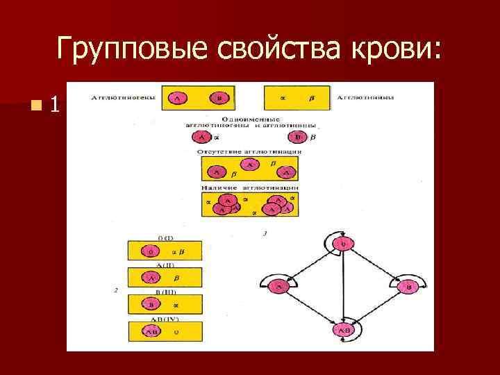 Групповые свойства крови: n 1