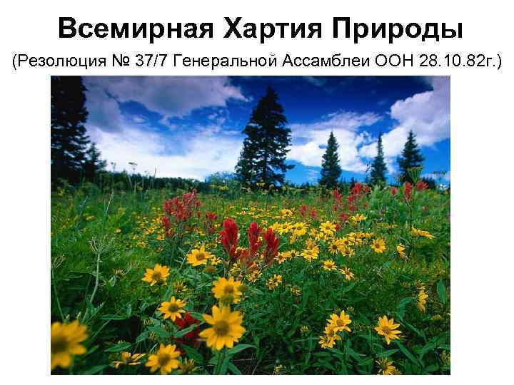 Всемирная Хартия Природы (Резолюция № 37/7 Генеральной Ассамблеи ООН 28. 10. 82 г.