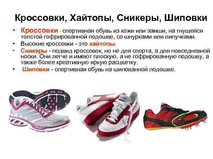 Кроссовки, Хайтопы, Сникеры, Шиповки • Кроссовки - спортивная обувь из кожи или замши, на