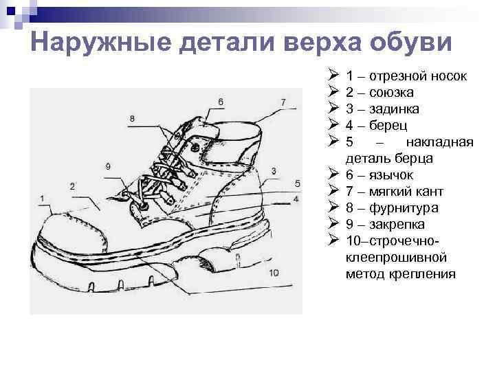 Детали низа обуви в картинках