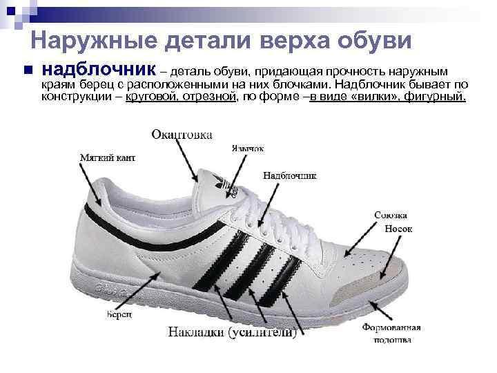 Наружные детали верха обуви n  надблочник – деталь обуви, придающая прочность наружным краям