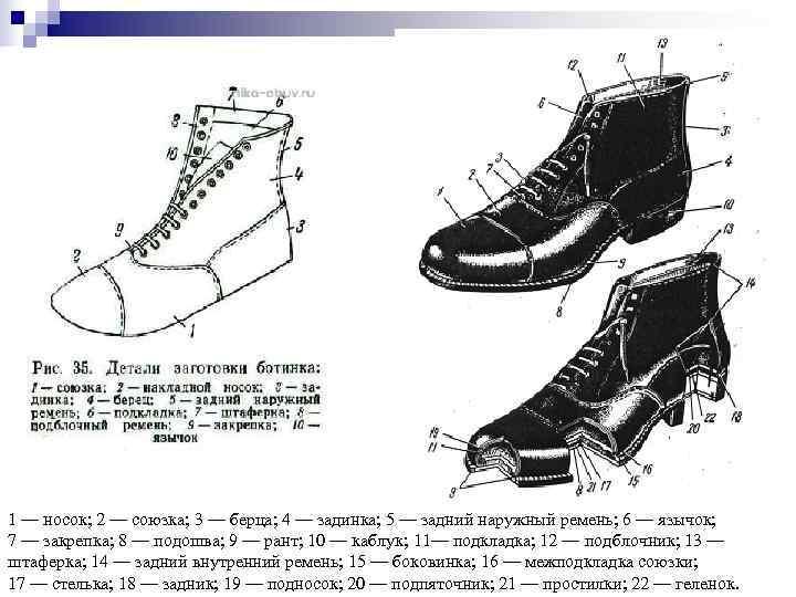1 — носок; 2 — союзка; 3 — берца; 4 — задинка; 5 —