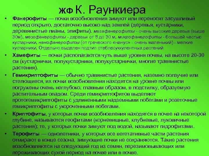 ЖФ К.  Раункиера •  Фанерофиты — почки