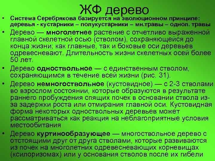 •     ЖФ дерево Система Серебрякова базируется на эволюционном принципе: