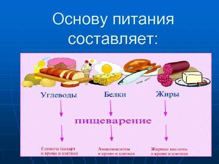 Основу питания составляет: