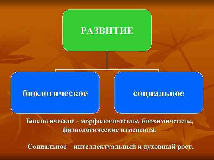 РАЗВИТИЕ биологическое   социальное Биологическое - морфологические, биохимические,