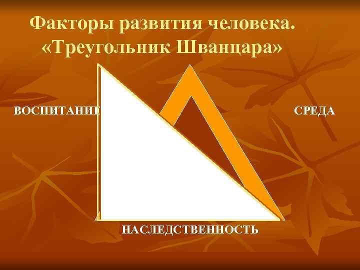Факторы развития человека. «Треугольник Шванцара»  ВОСПИТАНИЕ     СРЕДА