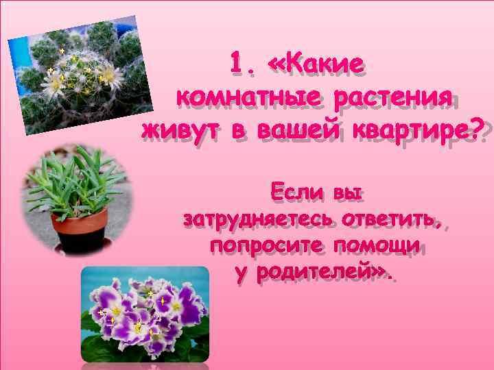 1.  «Какие  комнатные растения живут в вашей квартире?   Если
