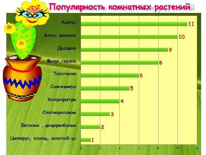 Популярность комнатных растений    Кактус