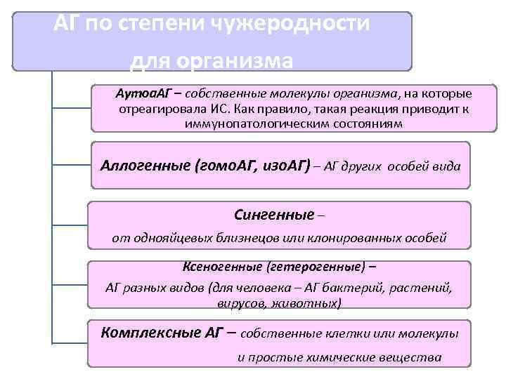 АГ по степени чужеродности  для организма Аутоа. АГ – собственные молекулы организма, на