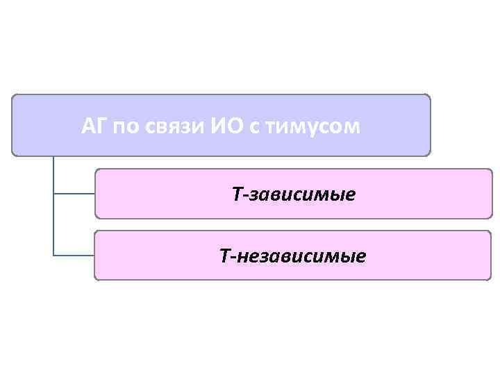 АГ по связи ИО с тимусом   Т-зависимые   Т-независимые