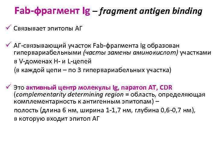 Fab-фрагмент Ig – fragment antigen binding ü Связывает эпитопы АГ ü АГ-связывающий участок