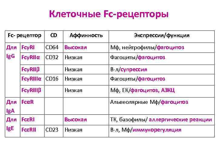 Клеточные Fc-рецепторы Fc- рецептор CD  Аффинность  Экспрессия/функция Для FcγRI
