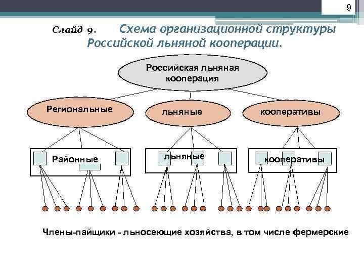 9  Слайд 9. Схема организационной структуры