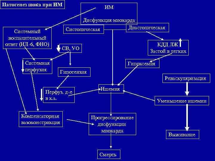 Патогенез шока при ИМ       Дисфункция миокарда