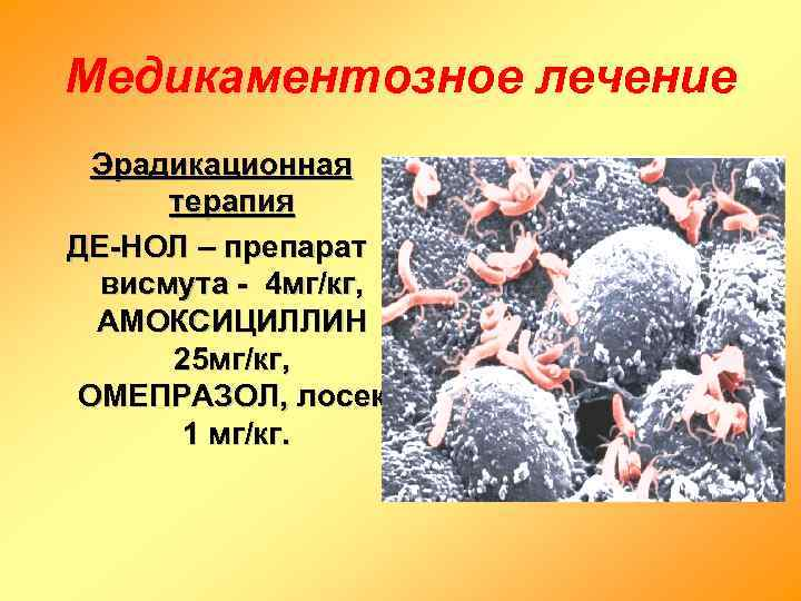Медикаментозное лечение  Эрадикационная  терапия ДЕ-НОЛ – препарат  висмута - 4 мг/кг,