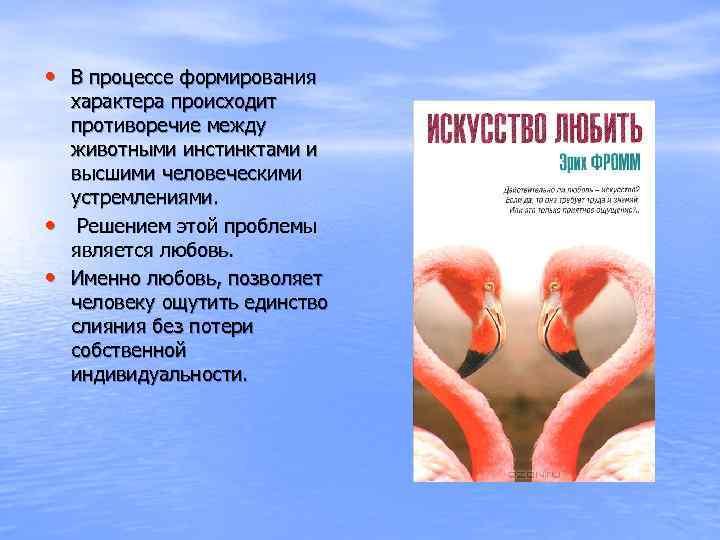 • В процессе формирования характера происходит противоречие между животными инстинктами и высшими человеческими