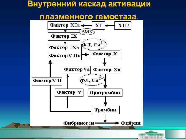 Внутренний каскад активации  плазменного гемостаза.