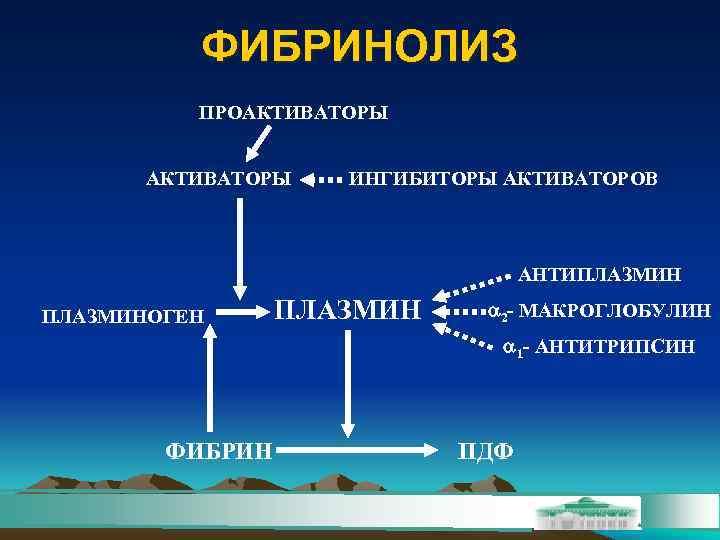 ФИБРИНОЛИЗ  ПРОАКТИВАТОРЫ  ИНГИБИТОРЫ АКТИВАТОРОВ