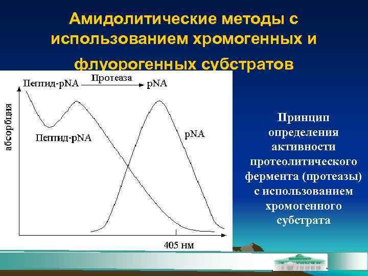 Амидолитические методы с использованием хромогенных и  флуорогенных субстратов