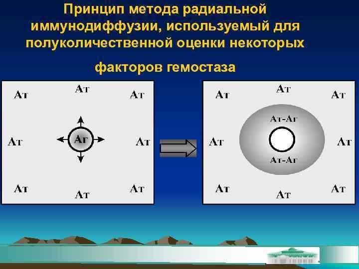 Принцип метода радиальной иммунодиффузии, используемый для полуколичественной оценки некоторых   факторов гемостаза