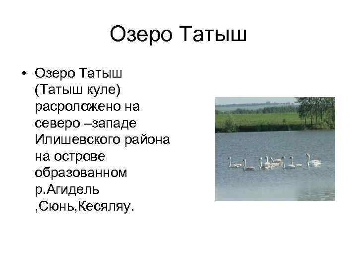 Озеро Татыш • Озеро Татыш  (Татыш куле)  расроложено на