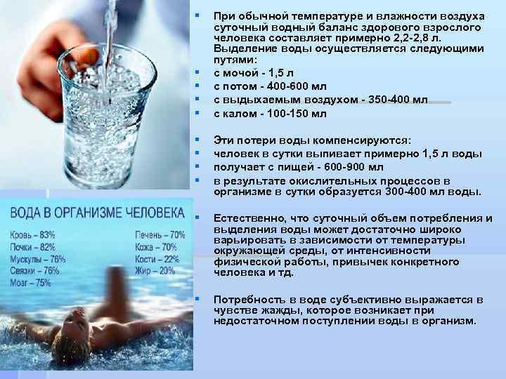 §  При обычной температуре и влажности воздуха суточный водный баланс здорового взрослого человека