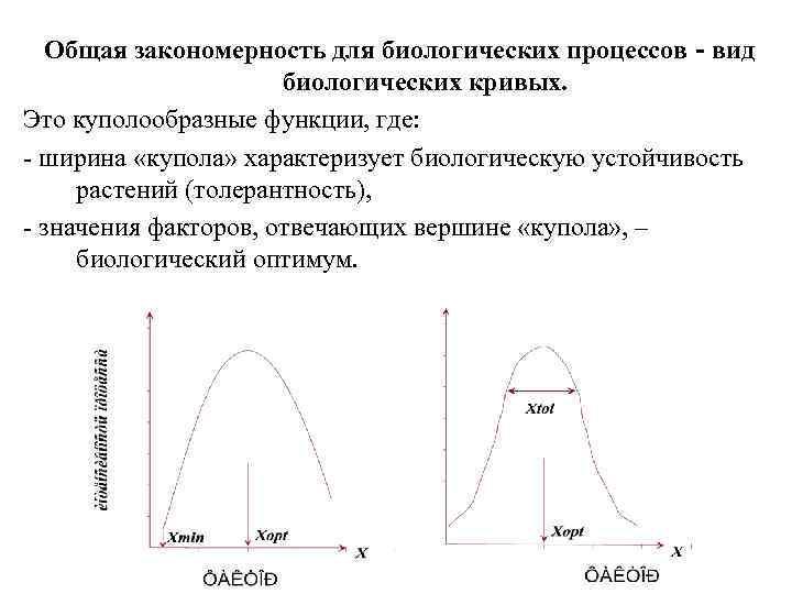Общая закономерность для биологических процессов - вид    биологических кривых. Это