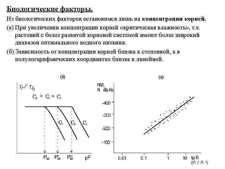 Биологические факторы. Из биологических факторов остановимся лишь на концентрации корней. (а) При увеличении концентрации